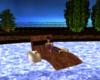 Hidden Dreams Pool Float