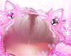 kitty ears v3