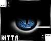  Kitta  Spirited Eyes F