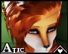 A! Fox   Samurel