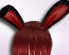 [E]P.Bunny Animated Ears