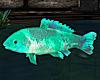 Animated Jumping Fish