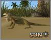 !SR!  Desert   Lizard