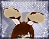 .M. CinnaBun Ears 3