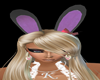 Playboy violeta ears