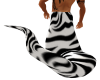 Zebra Snake Tail