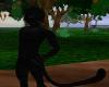 panther M furry bundle