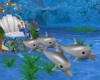 Deep Sea Taxi