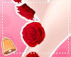 Leg Roses