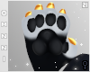 . Miracle | paws F