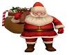 Derivable Santa Pet