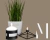 Deco Plant Candles