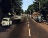 abbey Road backdrop