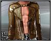 Bronze Metallic Jacket