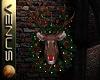 ~V~Rudolf