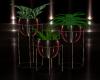 [CI]Red Velvet Plant 2