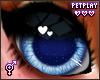 🍁 Fox Eyes 2