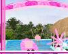 pink dream parasailing