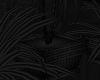 [AG] SR Plant 2