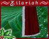 ~ZB Santa Cloak
