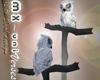 mx Snow owl (animated)