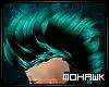 [MO] Lblue long hawk