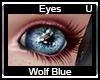 Blue Wolf Eyes