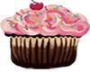 Pink & Chocolate Cupcake
