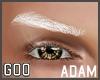 {G} Adam Brows White
