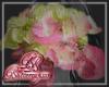 Hydrangea Pink A -Mirror