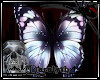 D)Darkness Butterfly 1