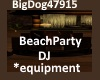 [BD]BeachPartyDJ