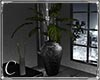 .:C:. Atelier plant