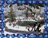 *M* Winter Park