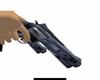 Colt RevolutionII