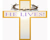 Hes  Alive Cross
