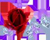rose and diamonds