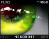 [HIME] Taiga Eyes