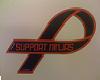 support ninjas