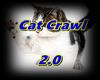Cat Crawl 2