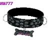 HB777 CSTM Pet Collar GA