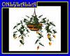 Yellow Hanging Plant