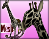 Rocker Giraffe