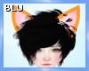 ! Fox Ears M/F
