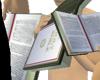 Bible High Quality Green