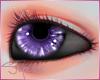 [SM]Unisex Purplee