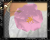 Sparkle Rose [PMR]