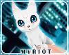Myriot'ArcticFox