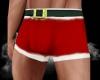 (AF) Santa's Boxers