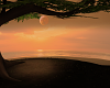 Sunset Dream !cliff